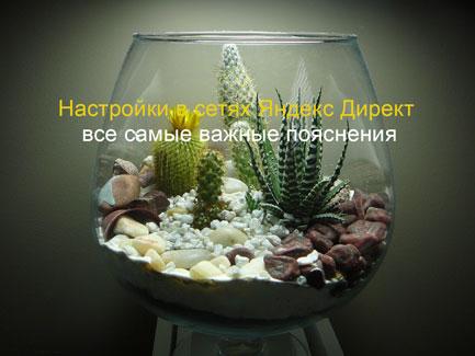 Настройки в сетях яндекс директ